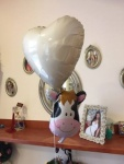 Balon za balon