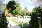 Tijana Jovan - venčanje u bašti